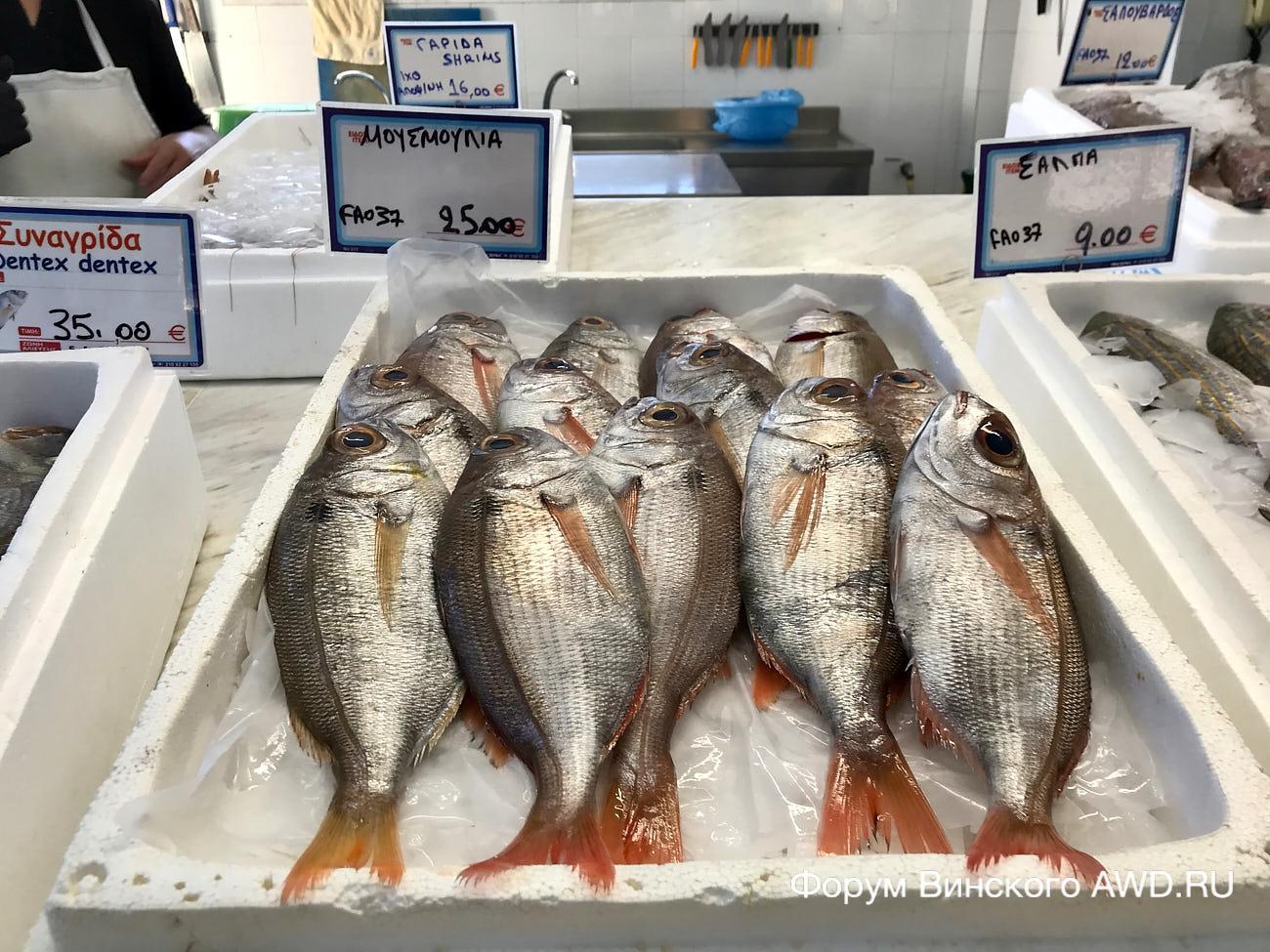 Рыбный рынок в Порто Куфо