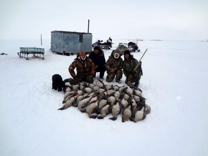 рыбалка в тундре россии видео
