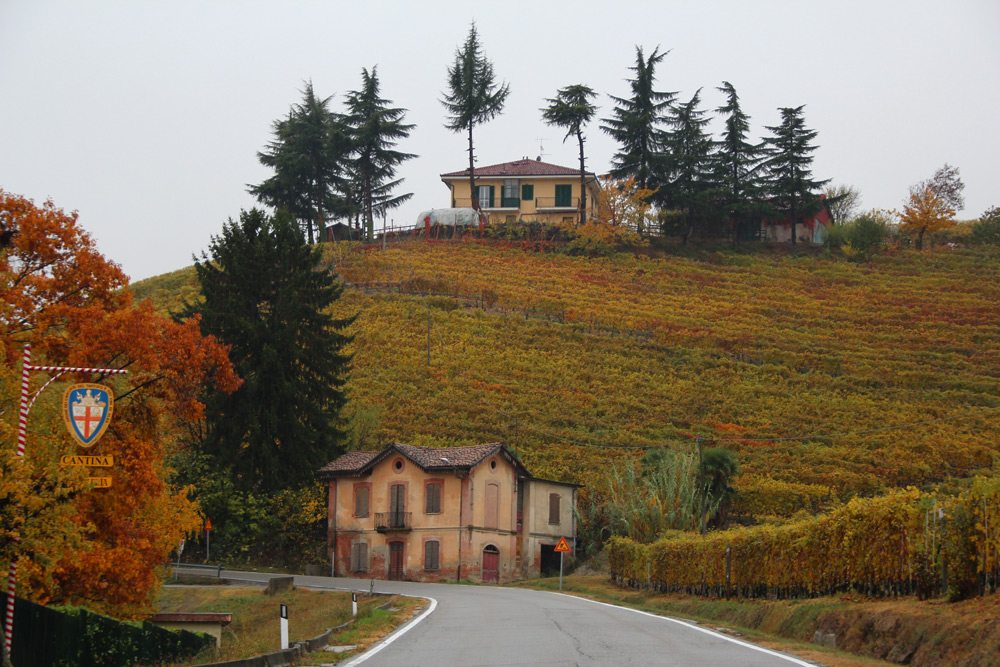 Пьемонт, Бароло, музей вина в Гринцане Кавур