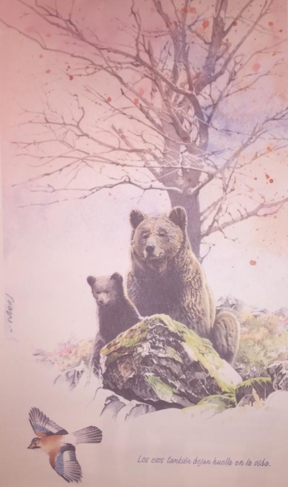 Mada y el Oso [Teverga – медведи тоже оставляют след в жизни]