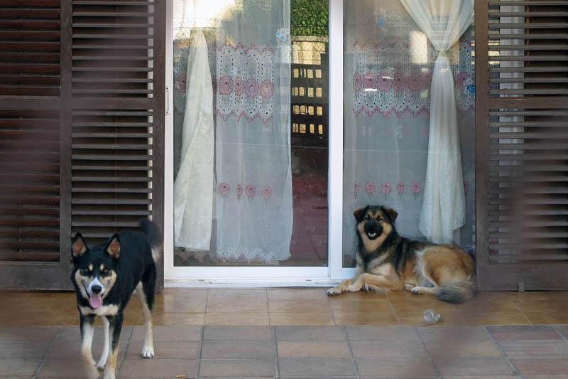 Немного Каталонии и Барселона. Солнечная осень 2011