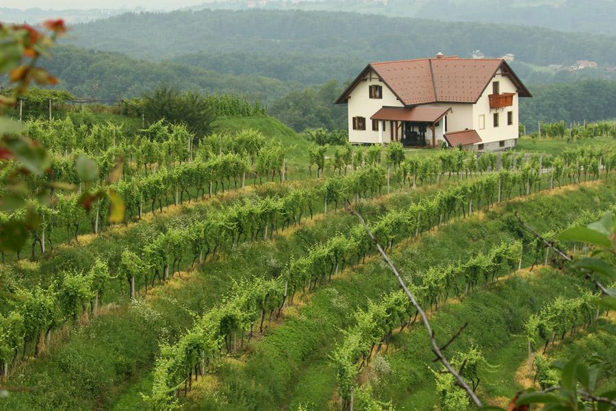 Земля в испании под сельское хозяйство